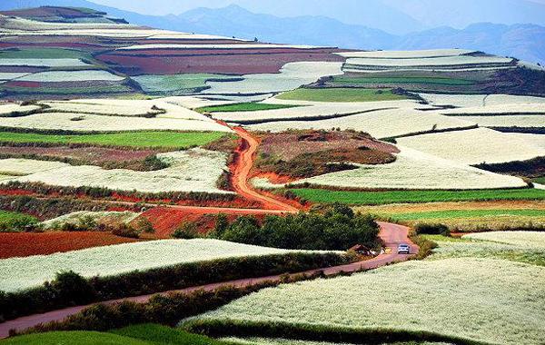 dealuri colorate in china