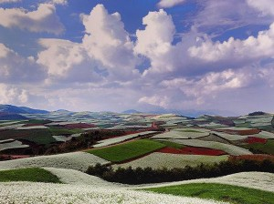 peisaj in culori mirifice