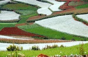 peisaj superb in culori deosebite