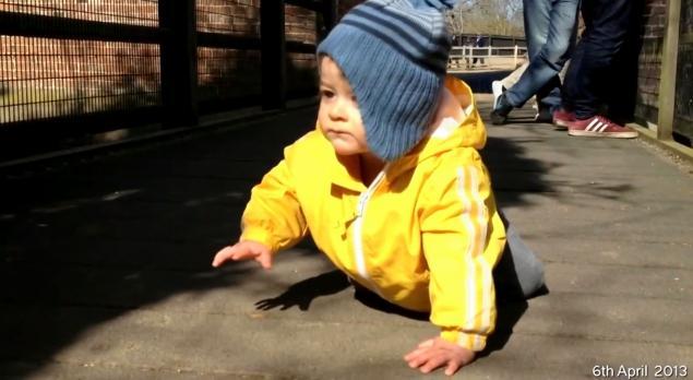 filmare bebelus