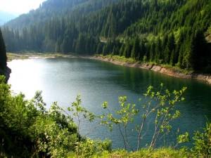 lacul-bolboci